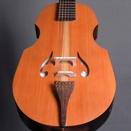 jo guitare avec cordes sympathiques
