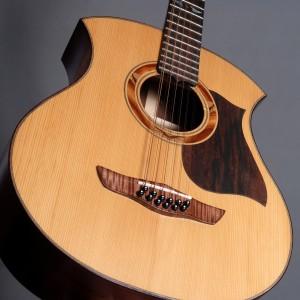 guitare12cordes2008_13