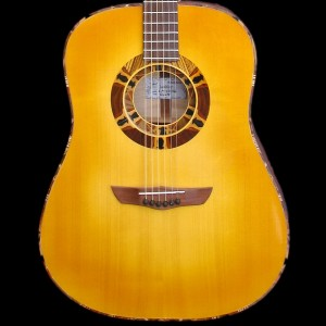 guitaredreadnought2004_01