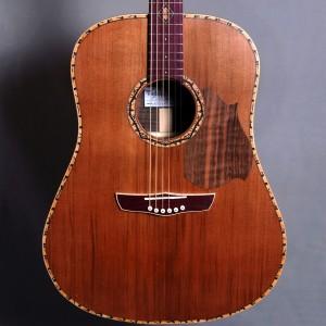guitaredreadnought2015_01
