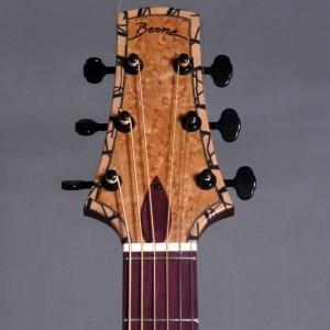 guitaredreadnought2015_03