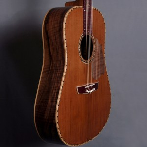 guitaredreadnought2015_05