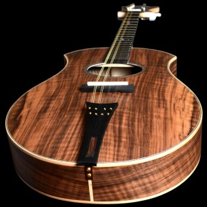 mandoline2017_10
