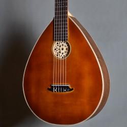 guitare médiévale