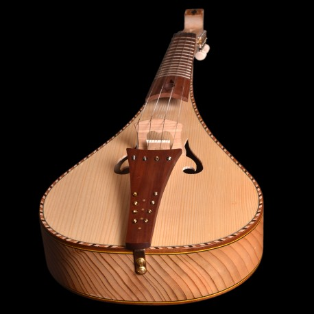 violon rebec avec cordes sympathiques