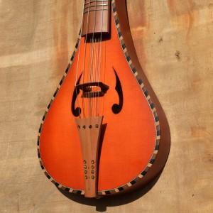 rebec2019-violon12cordes_03