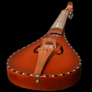 rebec2019-violon12cordes_16
