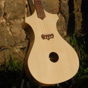 ukulelerectoverso2014_30