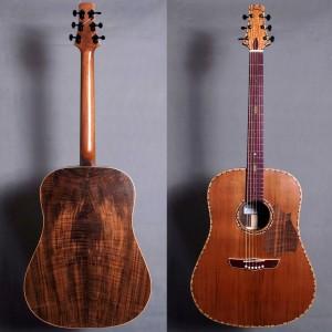 guitaredreadnought2015_02