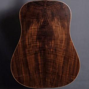guitaredreadnought2015_06
