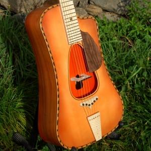 guitaremanojazz2014_15