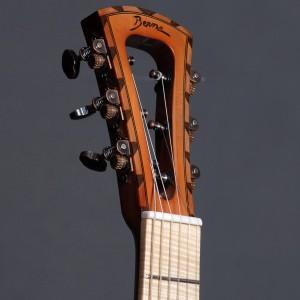 guitaremanojazz2014_45