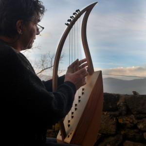 harpe2015_20
