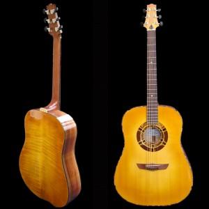 guitaredreadnought2004_03