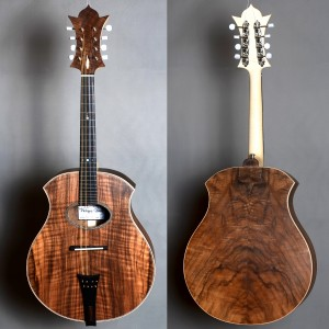 mandoline2017_01